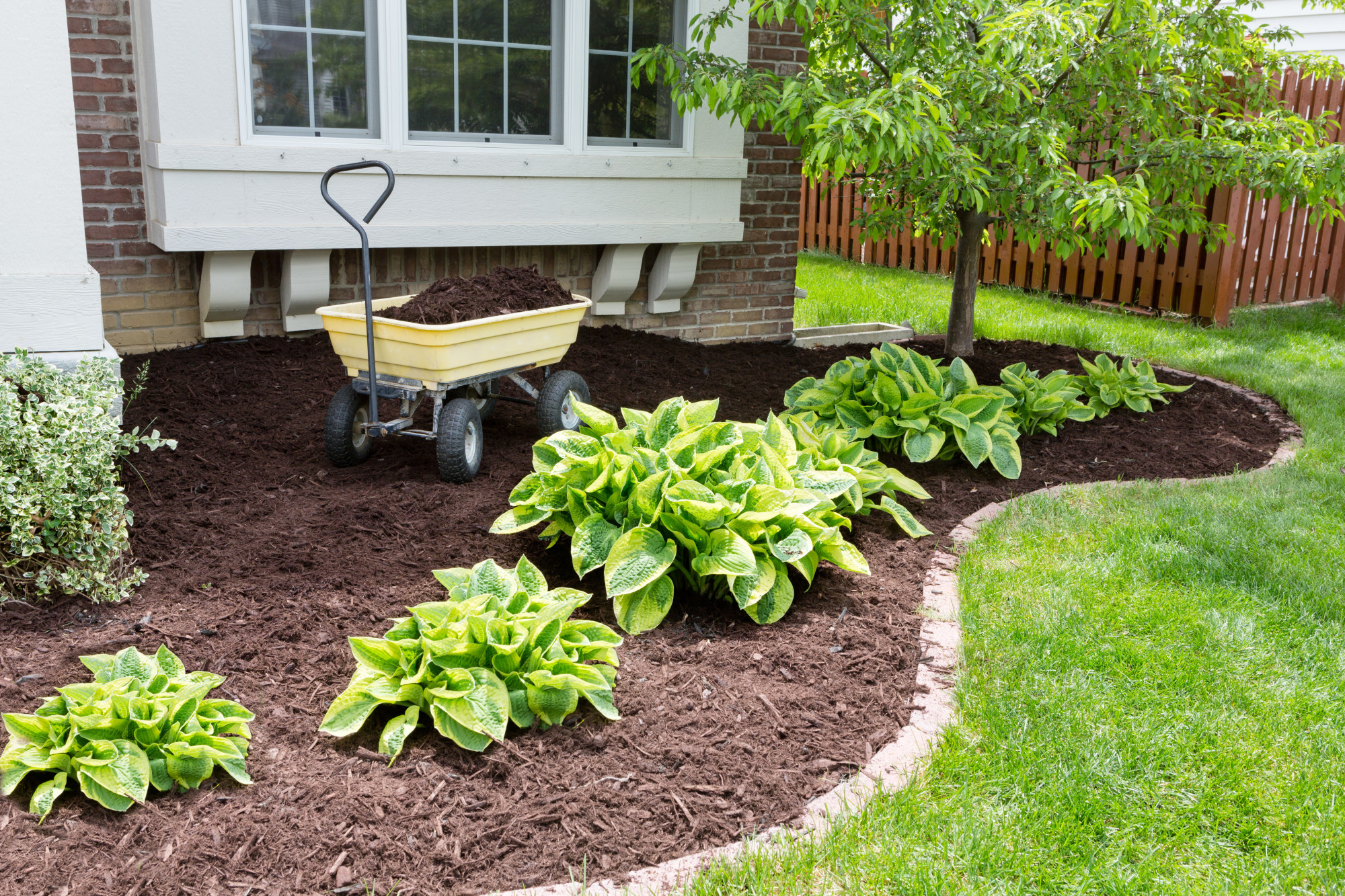 How to Live Your Best Lawn Life: 5 Landscaping Maintenance Tips You Need